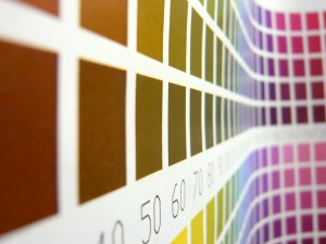 Choosing the Right Color for your Home: Part 2